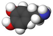 180px-Dopamine-3d-CPK